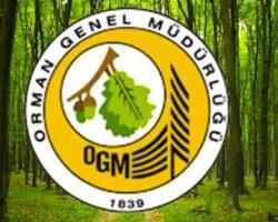 Orman Genel Müdürlüğü İşçi Alacak